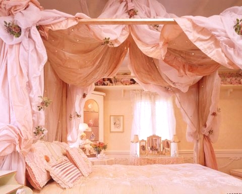 Pink Bed Canopy and Bedding