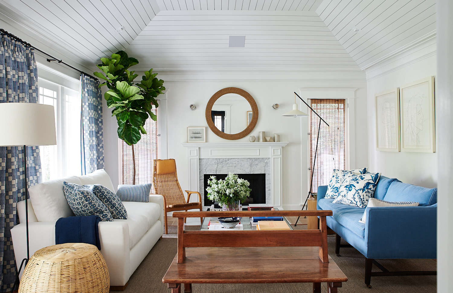 Pretty Living Room with Fig Plant